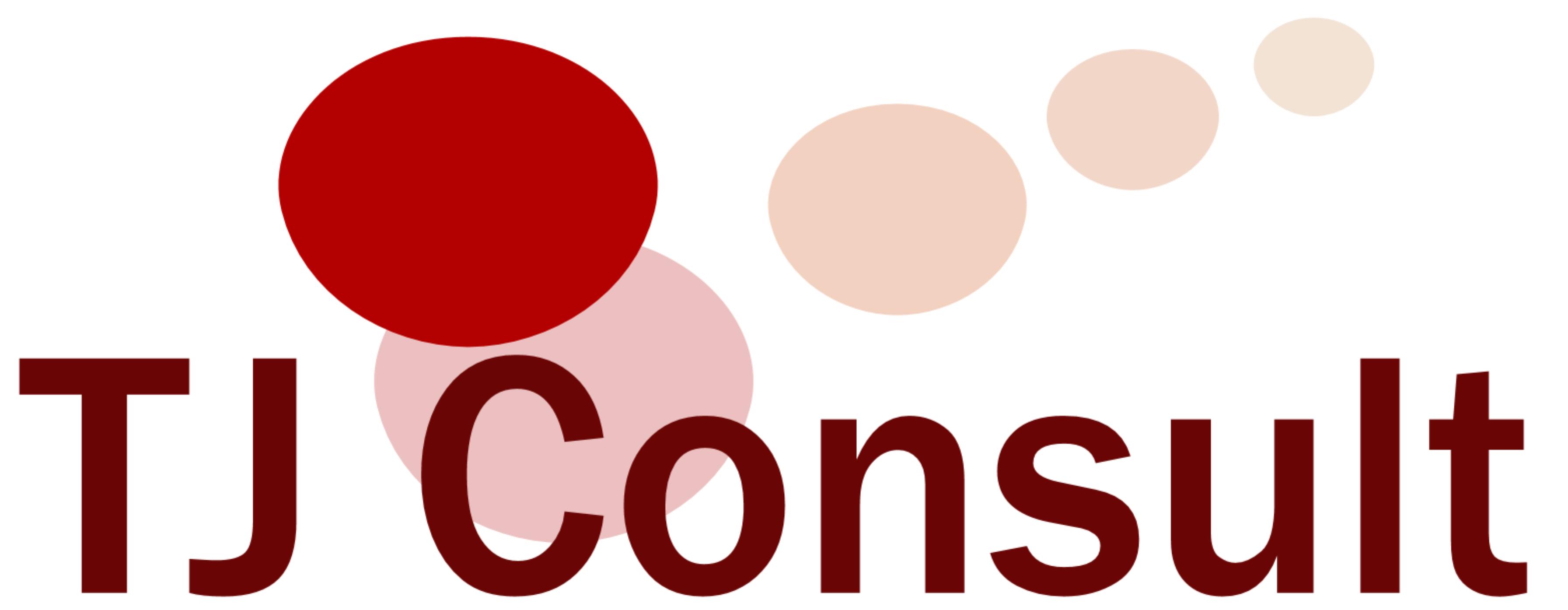 TJ Consult